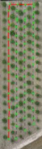 paths-86x300