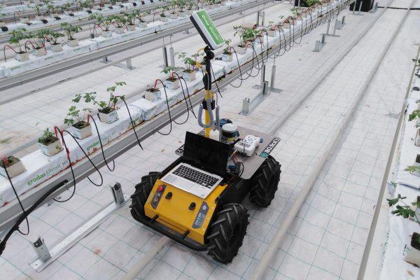 Proximal Sensing - Greenhouse
